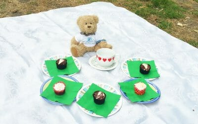 Join CHECT's Teddy Bears Picnic