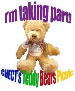 teddy picnic2