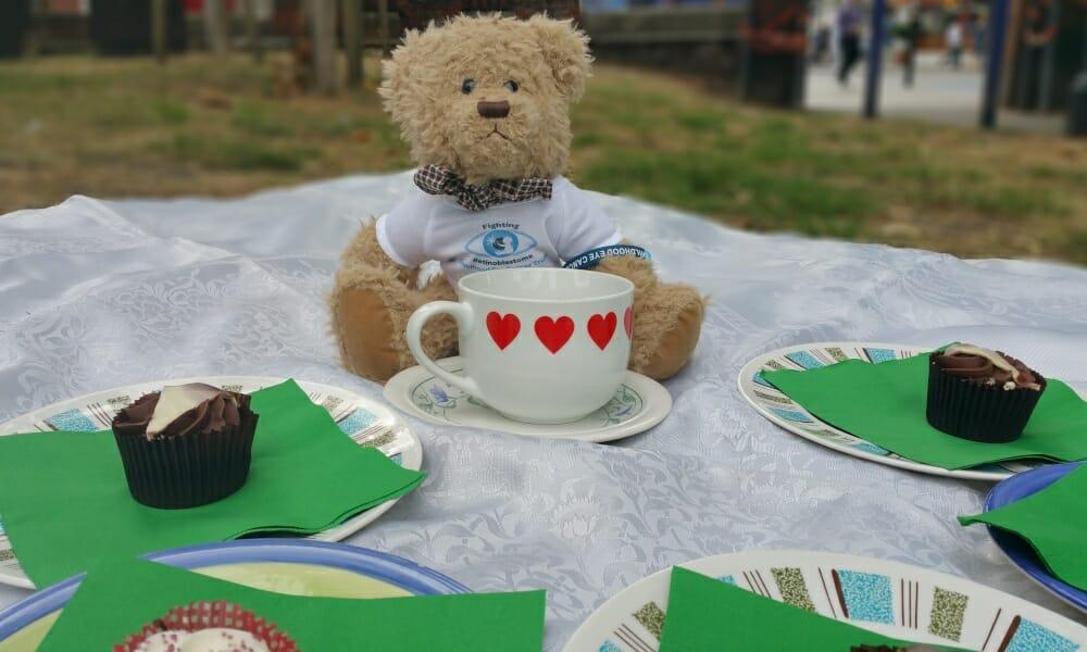 CHECT photo - teddy bears picnic